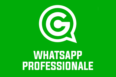 Utilizzo Professionale di WhatsApp [e i suoi fratelli]