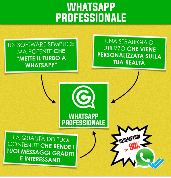 I 3 ingredienti del whatsapp marketing professionale by riccardo girardi